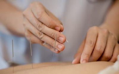 Weiterbildung Traditionelle Chinesische Medizin (TCM) für Physiotherapeut/innen