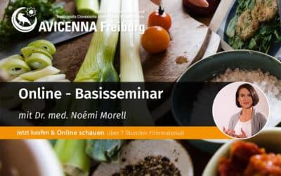 Online Basisseminar