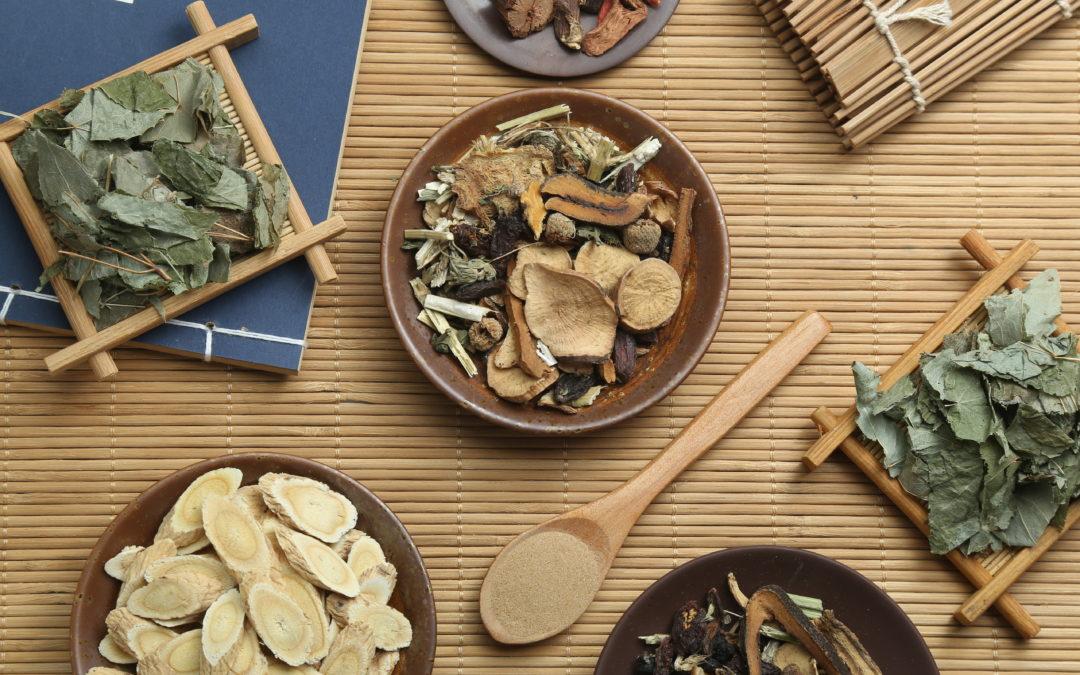 Traditionelle Chinesische Medizin (TCM) im Fernstudium mit Zertifikat – So verteilen sich Heimarbeit und Präsenszeiten